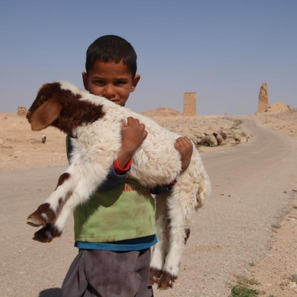 Young+Shepherd.jpg